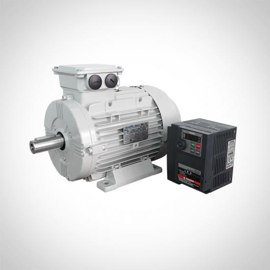 IE5 IE4 PM Synchronous Motors Premium Efficiency Motor